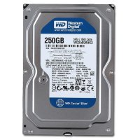 "250 Gb Western Digital WD2500AAKX Blue 3.5""  5400PRM 8Mb SATA 3Gb/s"